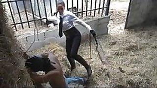 Latin evil whipping in stables